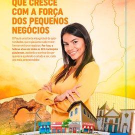 Dia do Piauí